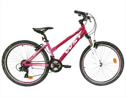"WST COSMO 26"" SEÑORA 2020"
